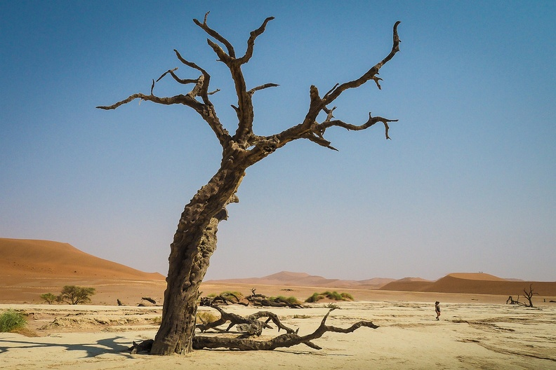Immersion in Namibia 3.jpg